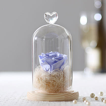 Forever Lavender Blue Rose In Glass Dome: