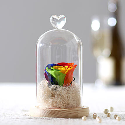 Forever Mystic Rainbow Rose In Glass Dome:
