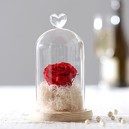 Timeless- Forever Red Rose In Glass Dome: Forever Roses