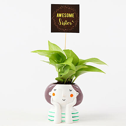 Golden Money Plant In Resin Pot For Sister: