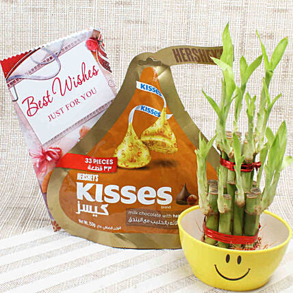 2 Layer Lucky Bamboo & Hershey's Kisses: Desktop Plants