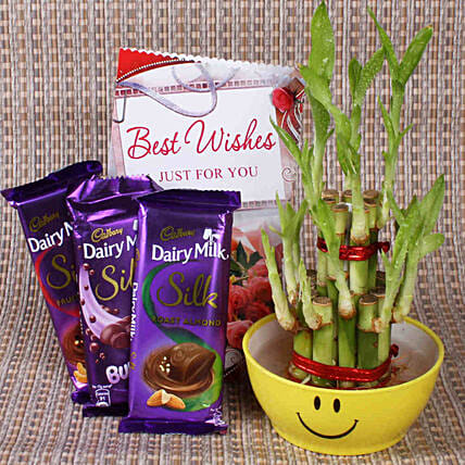 Best Wishes With Lucky Bamboo: Ornamental Plant Gifts
