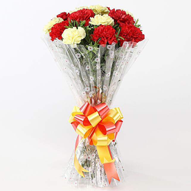 Beautiful Red & Yellow Carnations: Send Carnations