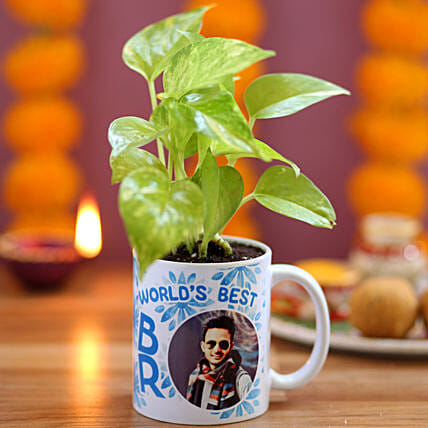 Best Brother Personalised Money Plant: