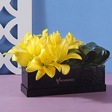 Box Of Yellow Asiatic Lilies: