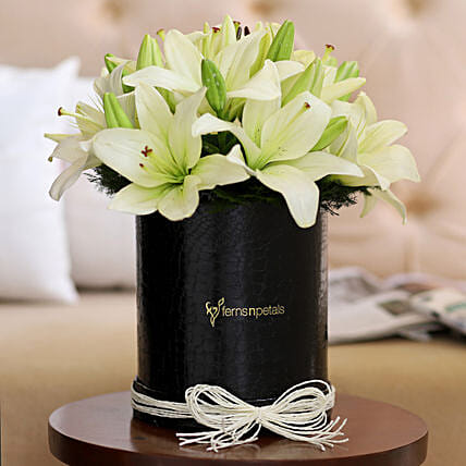 White Asiatic Lilies: Flowers In box