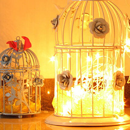 Artistic Birdcage With Fairy Lights: