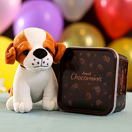 Adorable Dog Soft Toy & Chocominis: Soft toys for Propose Day