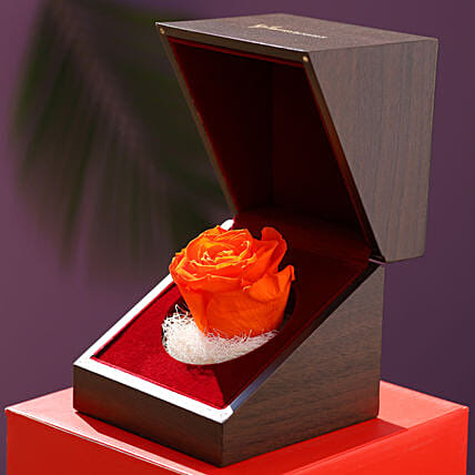 Elegant Forever Rose With Wooden Box: Valentines Day Flowers