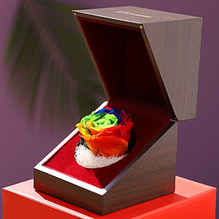 Eternal Multicolour Forever Rose In Wooden Box: Anniversary Flowers