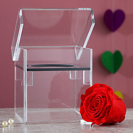 Magnificent Red Forever Rose In Acrylic Box: Red Flowers