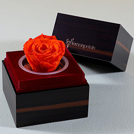 Orange Forever Rose In Wooden Box: Forever Roses