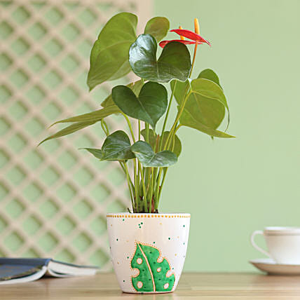 Anthurium Plant in Hand Painted Planter: Flowering Plants