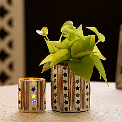 Neon Money Plant In Mosaic Art Pot & Votive Holder: Gifts to Jorhat