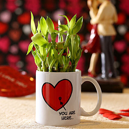 Lucky Bamboo You Are My Valentine's Mug: Send Plants for Valentines Day