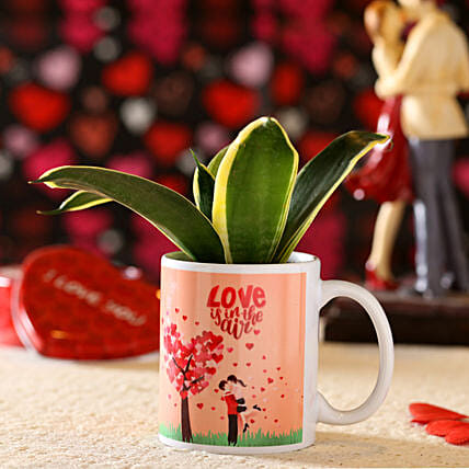 Sansevieria Plant In Love Is In The Air Mug: