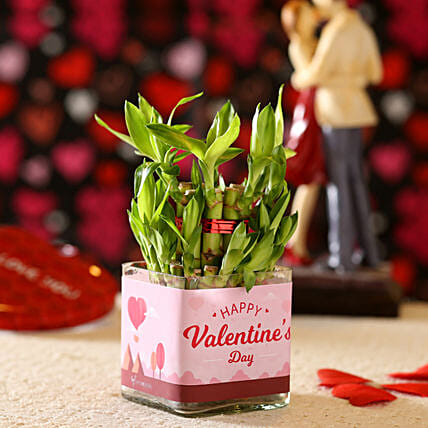 Valentine'e Greetings 2 Layer Bamboo Plant: Plants Delivery