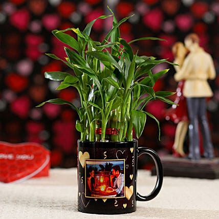 Bamboo Plant Personalised Heart Mug: Buy Indoor Plants