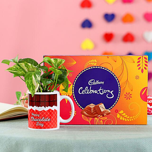 Chocolaty Money Plant Combo: Air Purifying Plants