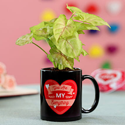 My Everything Syngonium Plant: Send Promise Day Gifts