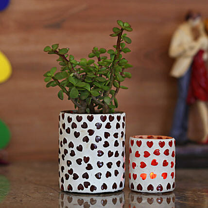 Jade Plant & White Hearts Votive Holders: Home Decor Gifts Ideas