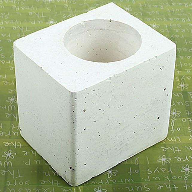 White Square Concrete Planter: Pots for Plants
