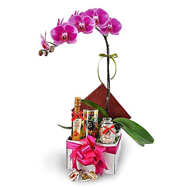 Phalaenopsis Flowers With Halal Food Treats: Plants in Malaysia
