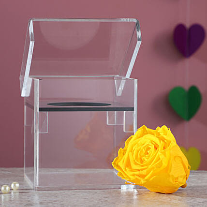 Forever Rose In Acrylic Box: