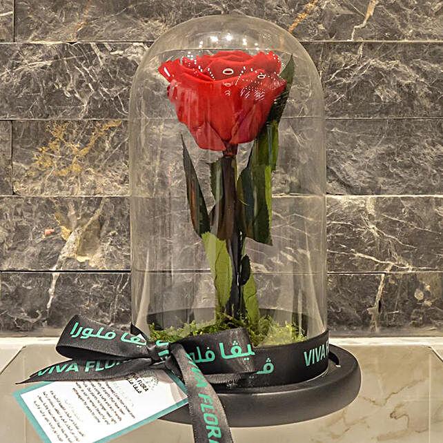 Precious Rose Dome: Send Forever Roses to Qatar