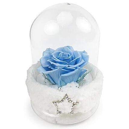 Forever Blue Everlasting Love Rose: Valentine's Day Gifts to Thailand