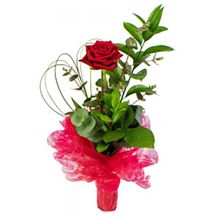 You Are The One: Rose Day Gift Delivery in UK