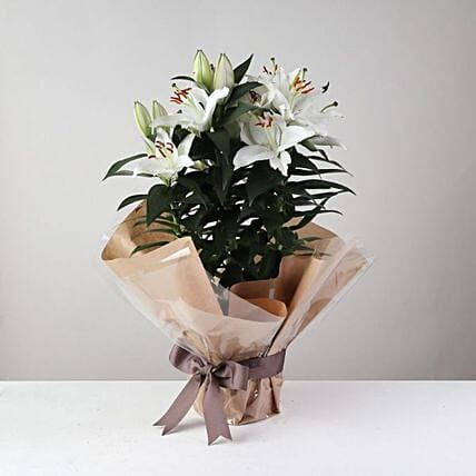 White Surprise Lilies: Flower Delivery UK