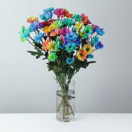 Rainbow By Chrysanthemums: Flower Delivery UK