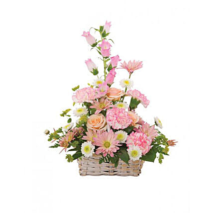 Basket of Cheer: Carnations