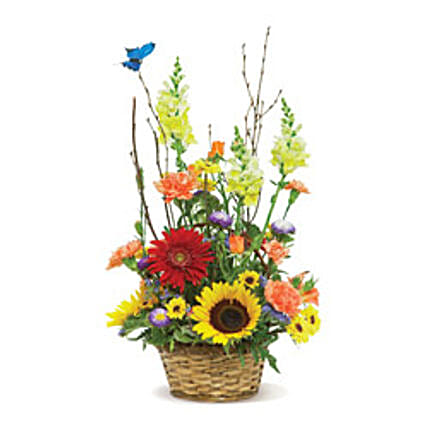 Butterfly Garden USA: Flower Delivery in San Francisco