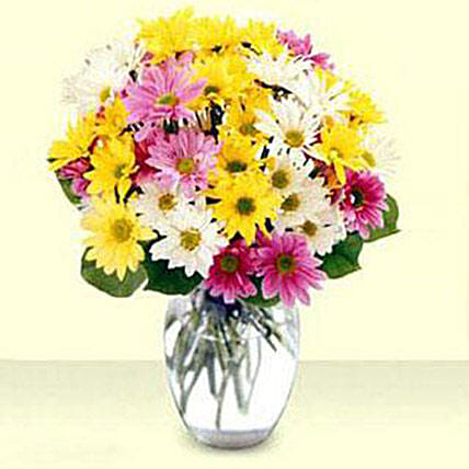 Mixed Daisy Bouquet: