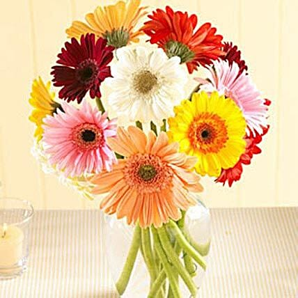 Multi Color Gerberas in Vase: Flower Delivery in San Francisco
