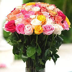 Send Mixed Flowers to Canada Online