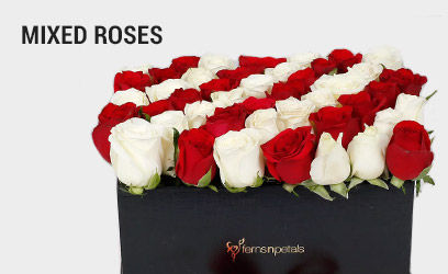 Mixed-Roses-desk-17-feb-2019.jpg