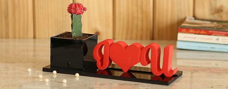 Love N Romance Plants