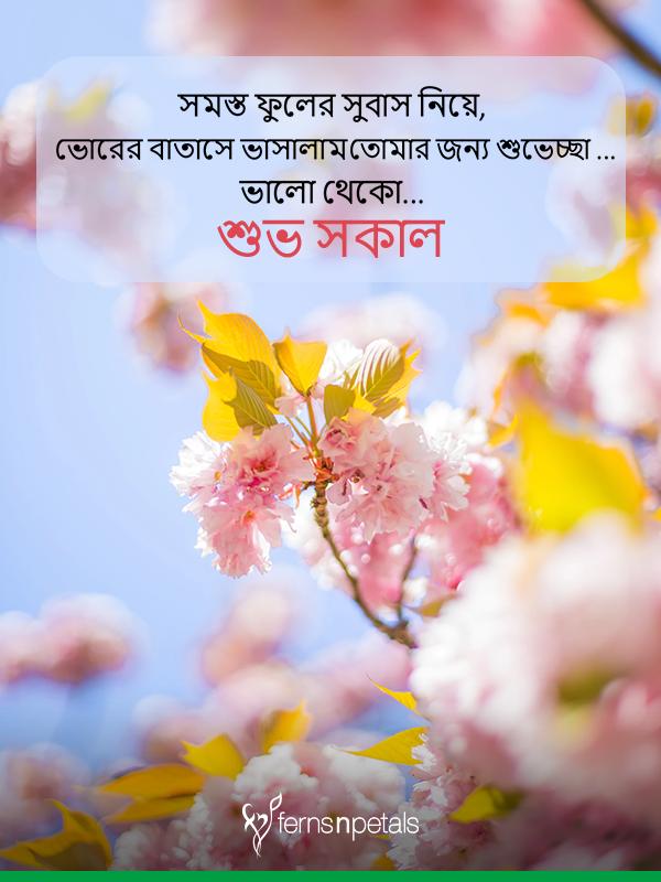 bangala good morning wishes images