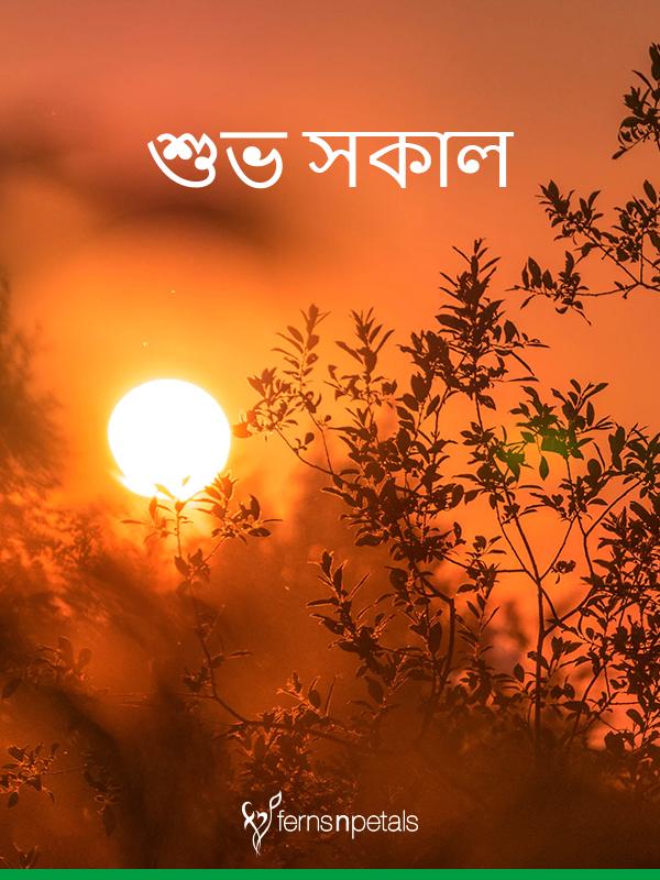 best bangala good morning wishes images