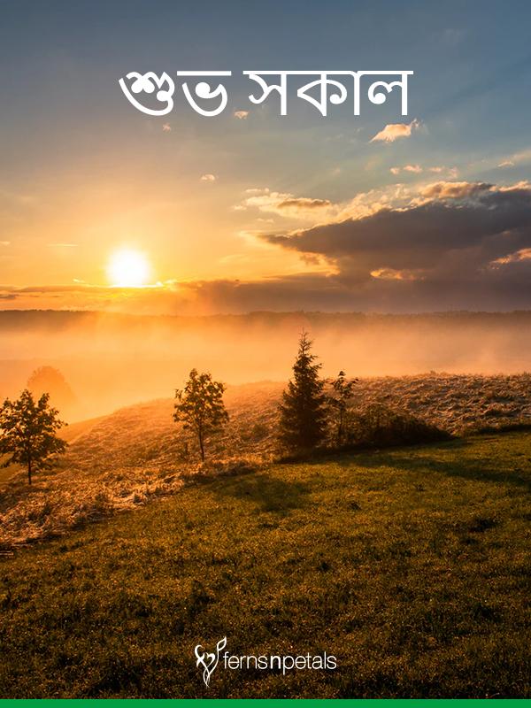 best bengoli morning wishes images