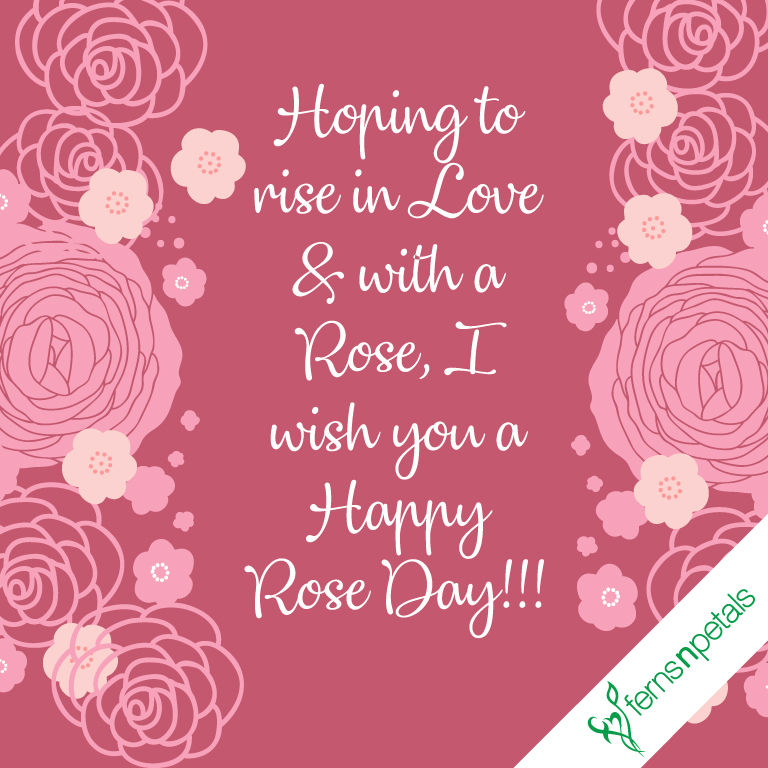 rose day wishes online