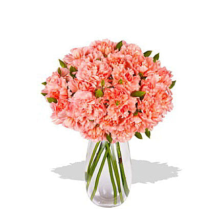 Pink Carnation:Carnations