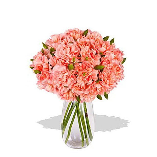 Pink Carnation:Flower Delivery Australia