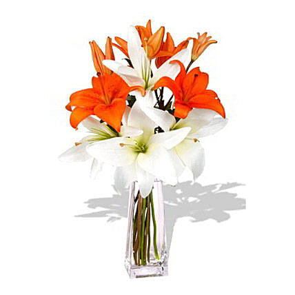 Ray of Life:Flower Delivery Australia