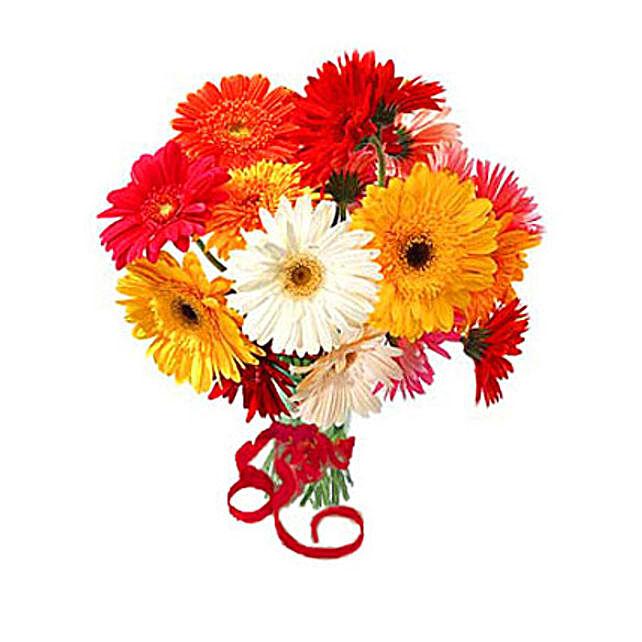 12 Multi Color Gerberas Bouquet