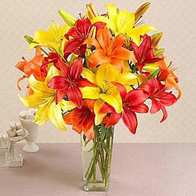California Mixed Asiatic Lilies