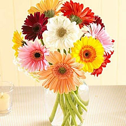 Multi Color Gerberas in Vase